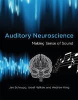 Auditory neuroscience: making sense of sound