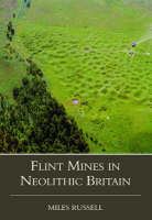 Flint mines in neolithic Britain
