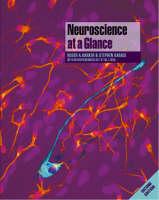 Neuroscience at a glance