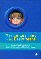 Play, metacognition and self-regulation