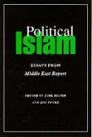 Is Iran an Islamic State? [in] Political Islam: essays from Middle East Report